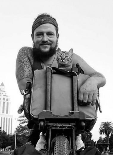 Кошка, изменившая жизнь. Дин Николсон: «Мир Налы»