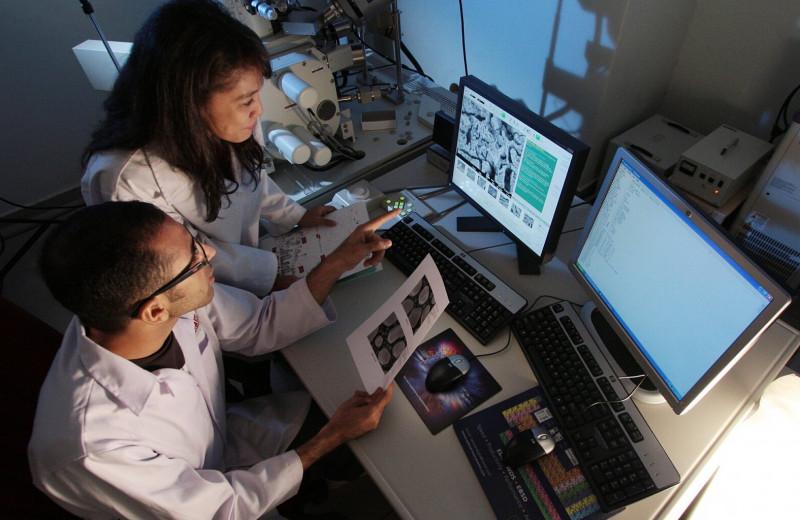Живая посуда, суперкостюм для мяса и другие биотехнологии будущего для человека