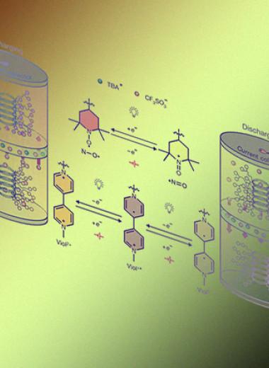 Из полипептидов сделали перерабатываемые аккумуляторы