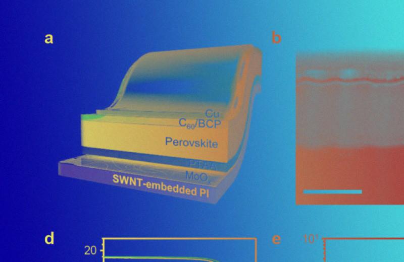 Из перовскитов и углеродных нанотрубок сделали гнущийся солнечный элемент