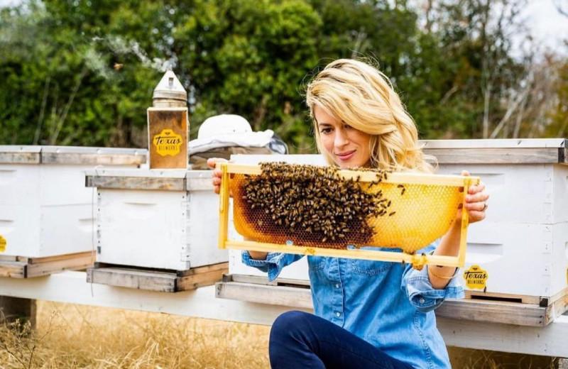 Женщина работает с пчелами голыми руками: видео