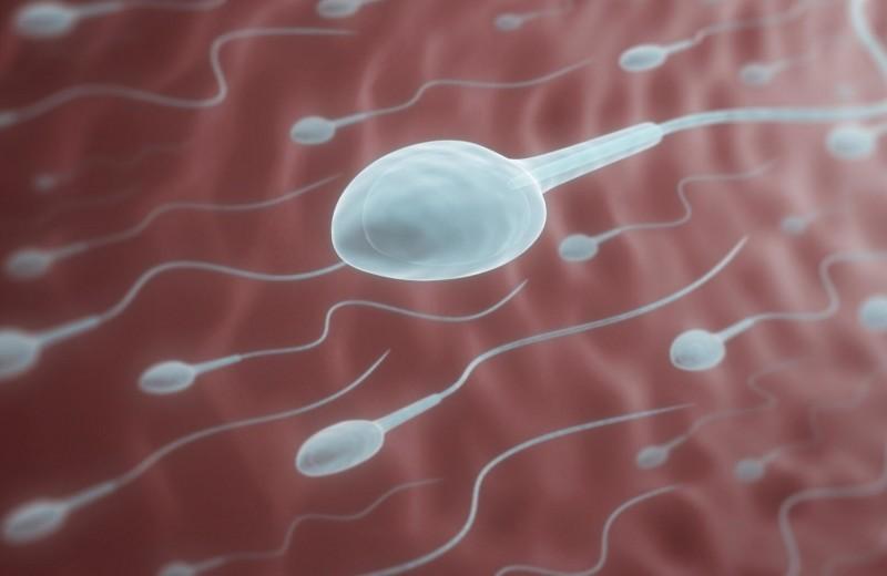 Что посеешь: научные факты о мужском семени