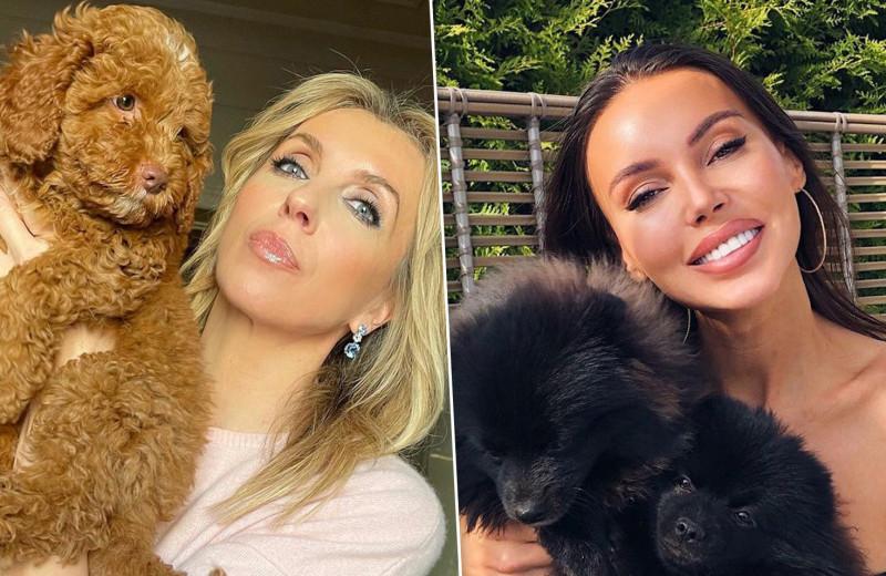 Я и моя тень: знаменитости и их домашние животные — точные копии хозяев