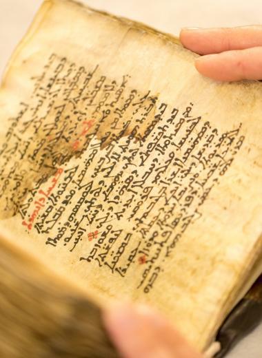 Ученые проявили 26 страниц невидимого текста из книги Галена. Осталось почти 200