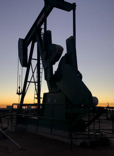 Нефтяное пятно после разлива топлива в Республике Коми движется в Северный Ледовитый океан
