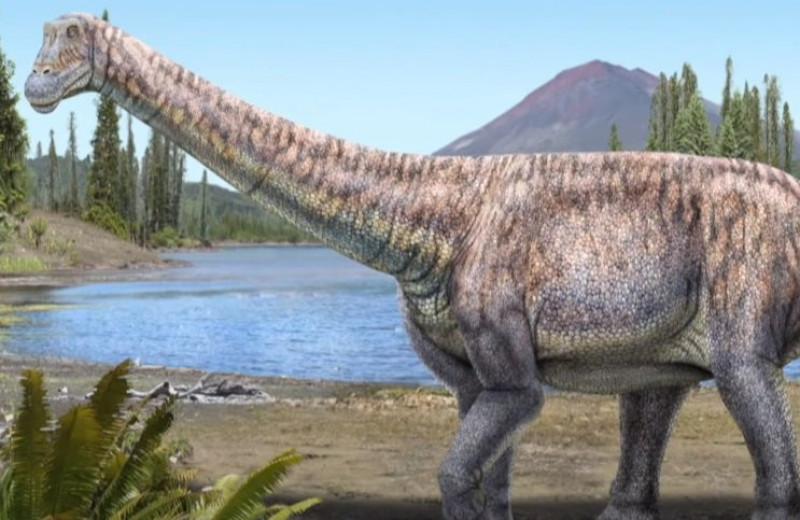 В Чили обнаружен новый вид титанозавра