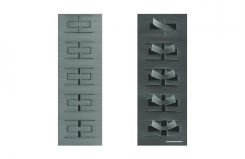 Киригами помогло вырезать из нитрида кремния наноразмерные подвижные «лепестки»