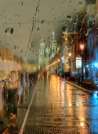 В России идут дожди: результаты нового исследования климатологов
