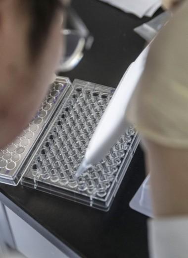 Лекарством от старости может оказаться противовирусный препарат