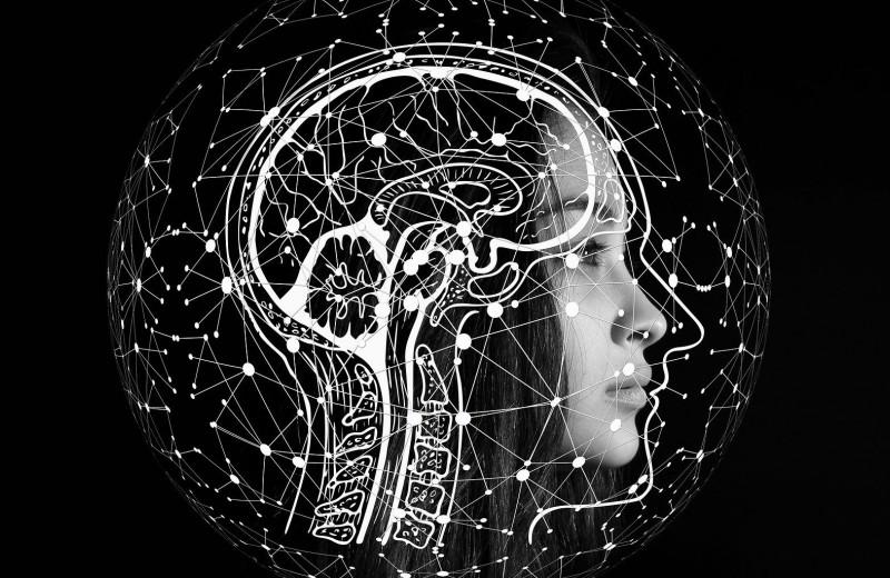 Как улучшить работу мозга: 7 ключевых факторов