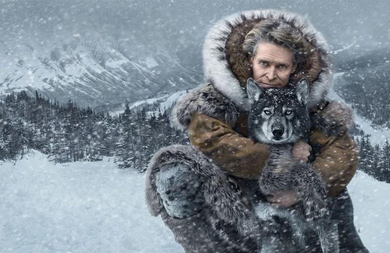 Фильмы про выживание, основанные на реальных событиях: 11 лучших картин