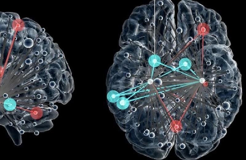 Функциональные связи гиппокампа предсказали субъективный стресс