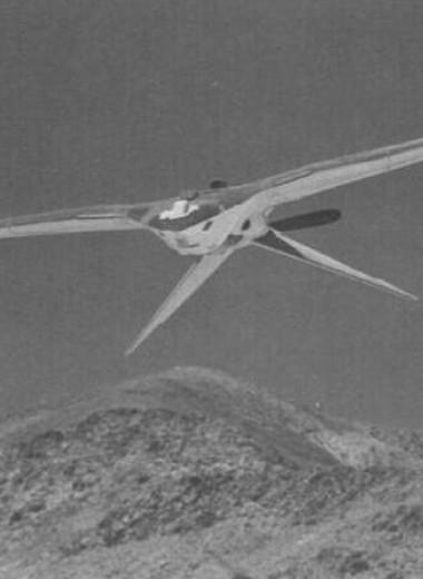 ЦРУ рассекретило проект шпионских дронов-птиц