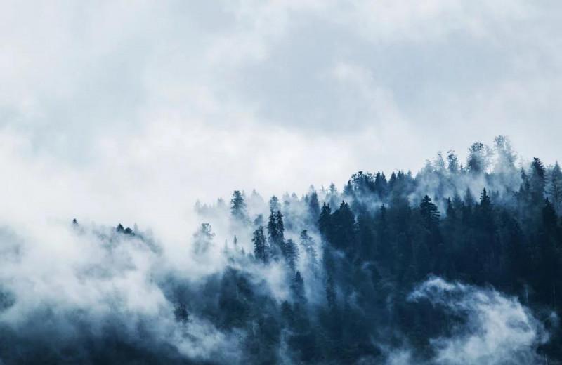 Что такое edge computing и почему все внезапно заговорили о «туманных вычислениях»