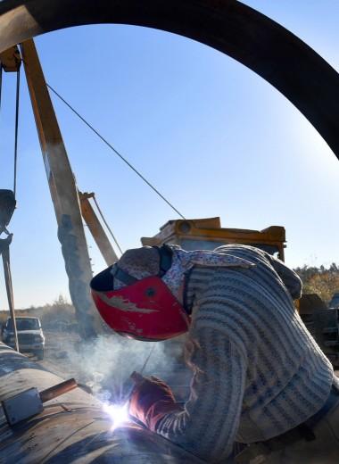 «Транснефть» договорилась об условиях первой компенсации за грязную нефть в «Дружбе»