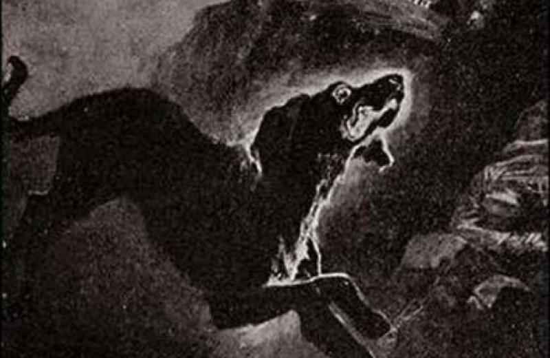 Черный Шак: пес-легенда, воплотившийся в «Собаке Баскервилей»