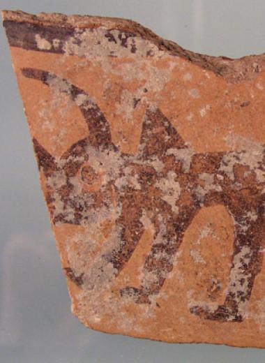 Следы бананов и куркумы в зубном камне указали на торговые связи Леванта с Южной Азией в бронзовом веке
