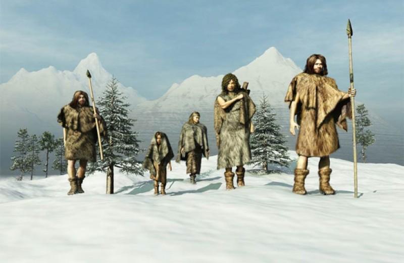 Кости лисицы помогли пересмотреть представления о миграции охотников ледникового периода