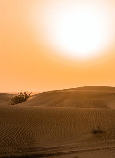 Пар костей не ломит: 5 стран, где люди работают даже в сильную жару