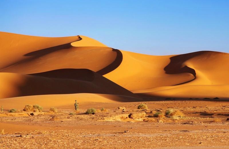 Язык земли: как песчаные дюны общаются друг с другом