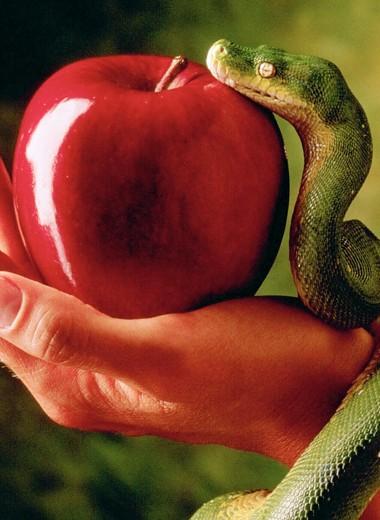 Иди и греши! 7 смертных грехов как залог счастливой и спокойной жизни