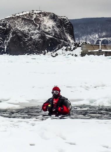 «Мы взяли отметку в 111 метров». Как российские дайверы ставят рекорды в ледяных морях