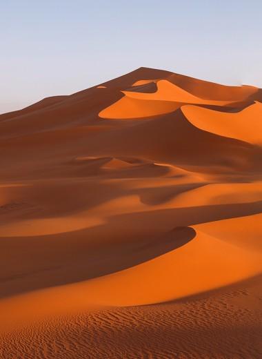 Площадь Сахары увеличилась на 10% за сто лет
