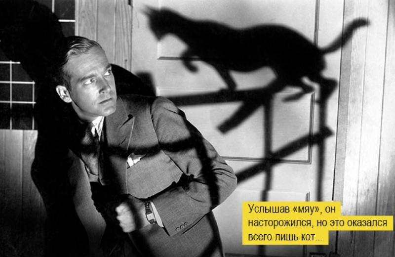 Если черный кот тарелку разобьет: откуда взялись известные суеверия