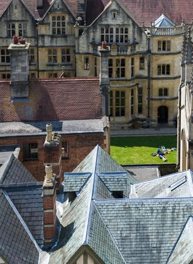 Какие специальности стремятся получить студенты британских вузов