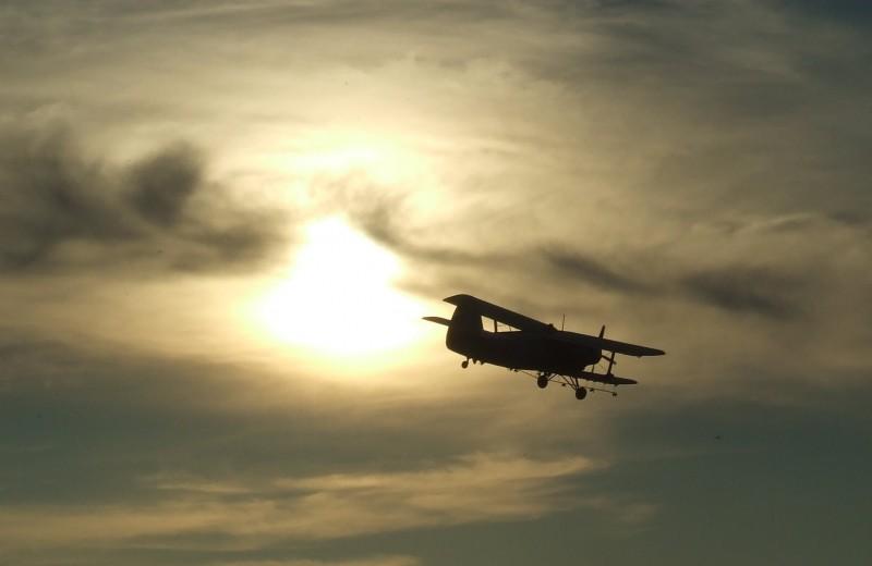 Патриарх малой авиации: Ан-2 «Кукурузник»