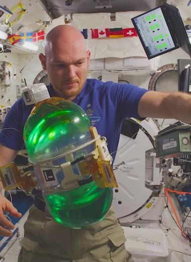 Первое 8K-видео из космоса: как работают и живут на МКС