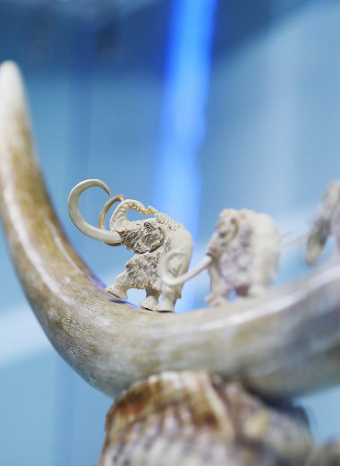 Якутские ученые создадут мыло со стружкой из мамонтовой кости