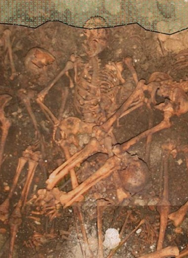 Анализ костей показал различия в привычках жителей средневековых Италии и Дании