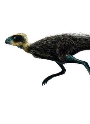 Палеонтологи приняли писанозавра в отряд птицетазовых