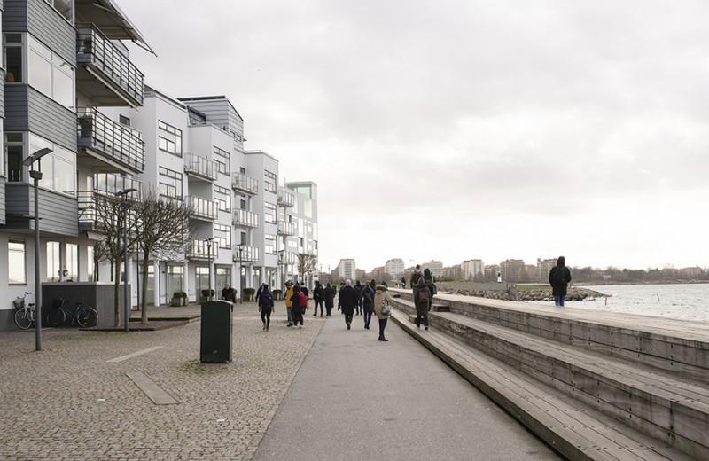 Деревянные многоэтажки и газоны в гаражах. Почему Европа живет в эко-будущем уже сегодня