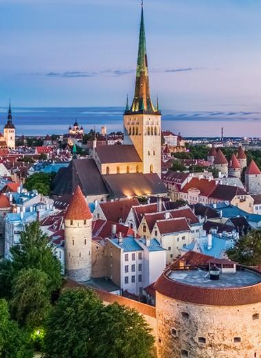 Арт, еда и спа: три причины поехать в Эстонию