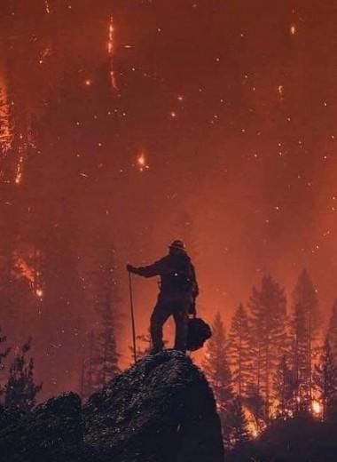 Крупнейший пожар опустошает Калифорнию: фото и видео