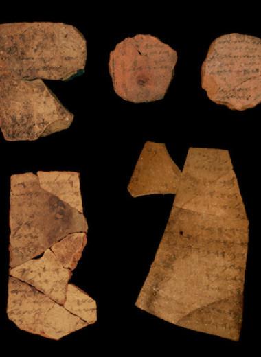 Надписи на черепках рассказали о грамотности воинов Иудейского царства
