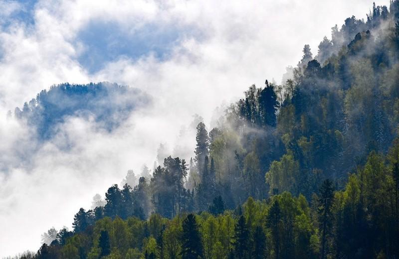 Место силы: как Алтай стал новой туристической Меккой России