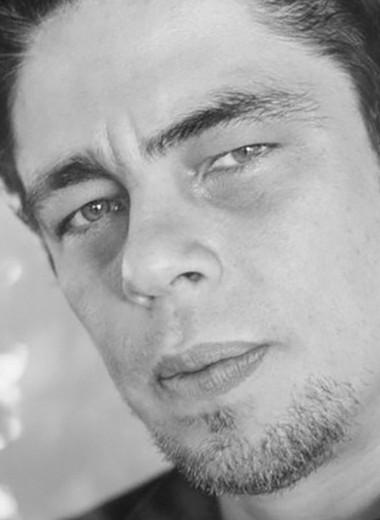 Правила жизни Бенисио Дель Торо