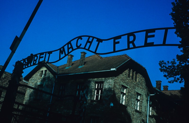 Хранительница знания: как 14-летняя узница Освенцима создала в концлагере подпольную библиотеку