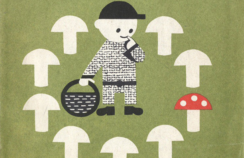 В продуктах с дикорастущими грибами обнаружили культивируемые и потенциально ядовитые грибы