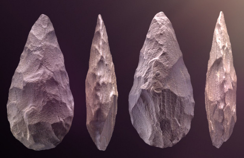 Гоминины освоили Аравийский полуостров не позднее 350000 лет назад