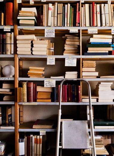 15 книг, которые нужно прочитать этой осенью