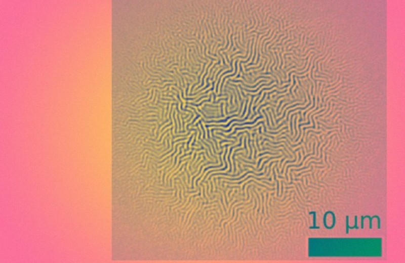 Лазер сгенерировал неповторимые морщинки
