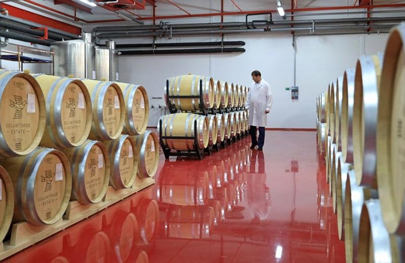 Тучи апокалипсиса: почему мировое виноделие находится на пороге кризиса