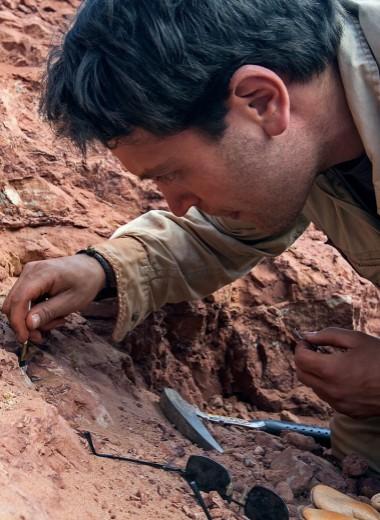 Низар Ибрагим — самый везучий палеонтолог наших дней