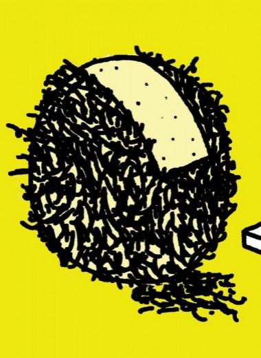 Как правильно брить яички?
