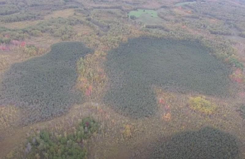 На дне Васюганских болот активно копятся редкие металлы