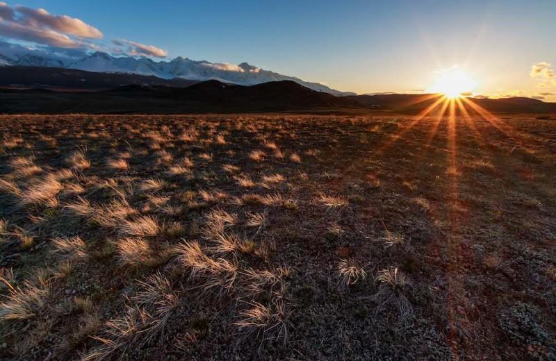 Весеннее равноденствие 2019: когда кончится зима?
